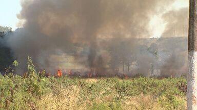 Incêndio atinge 2 hectares de área verde na zona sul de Ribeirão Preto - Corpo de Bombeiros contou com apoio do helicóptero Águia e aviões agrícolas para combater as chamas.