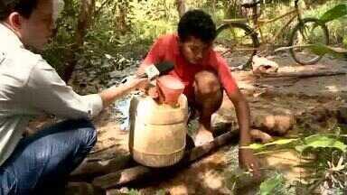 Estiagem: moradores de Nossa Senhora dos Remédios dividem água de riacho com animais - Estiagem: moradores de Nossa Senhora dos Remédios dividem água de riacho com animais
