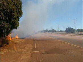 Fogo surpreende motoristas que passavam pela TO-050 - Fogo surpreende motoristas que passavam pela TO-050