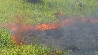 Clima seco faz aumentar a preocupação contras as queimadas - Em 2o15 já foram registrados 1476 focos de incêndio no estado, um aumento de 60% em relação com ano anterior