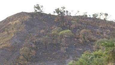 Bombeiros atendem mais de 15 chamados contra focos de incêndio na região - Os bombeiros da região de Jundiaí (SP) tiveram muito trabalho durante todo o fim de semana para conter pequenos focos de incêndio em mato. Foram pelo menos quinze chamados.