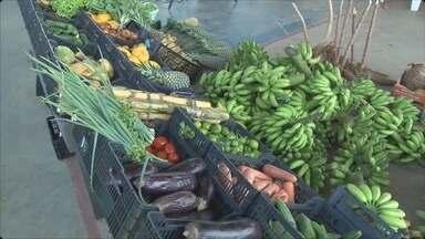 Famílias carentes vão receber frutas, verduras e hortaliças - A iniciativa é do Programa Fome Zero, que destinou meio milhão de reais para comprar os alimentos para as famílias de Ariquemes.
