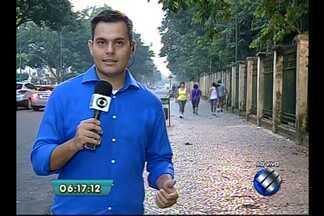 Em Belém, Bosque Rodriques Alves suspende atividades para a realização de manutenção - O espaço receberá limpeza nas áreas de visitação, trilhas, recintos, além da vistoria das árvores.