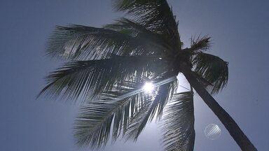 Ventos chegam aos 37 km/h em Salvador; veja na previsão - Informações são da capital e de cidades do interior.
