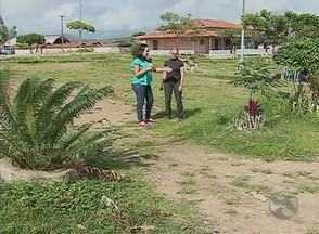 Moradores reclamam das condições de praça do Bairro Rendeiras, em Caruaru - Solução para os problemas do local foi cobrada no quadro 'Cidade Real'.