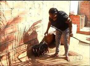 CCZ aponta que casos de dengue aumentaram em mais de 100% em Araguaína - CCZ aponta que casos de dengue aumentaram em mais de 100% em Araguaína