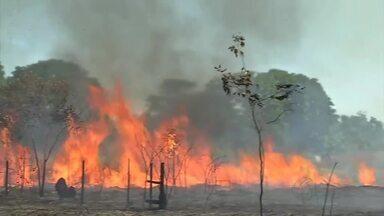 Combate às queimadas na região Amazônica são prioridade do Prevfogo - Combate às queimadas na região Amazônica são prioridade do Prevfogo