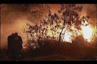 Após incêndios, moradores reclamam de cinzas em Uberlândia - Cinzas e vegetação queimada, provocadas pelos incêndios, dificultam limpeza de casas. Quantidade de incêndios aumenta nessa época do ano.