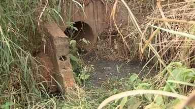 Esgoto é despejado em área com nascente de água no DF - A Caesb suspeita de que seja esgoto clandestino e vai investigar.