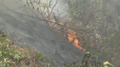 Incêndio atinge vegetação perto de posto de combustíveis no interior do AM - Servidores ajudaram a conter chamas; caso ocorreu em Iranduba.