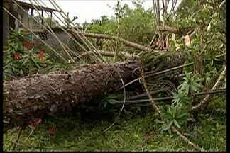 Moradores do Parque Residencial Itapeti, em Mogi, estão a mais de 20h sem energia - A interrupção foi causada pela chuva de terça-feira (8). Empresários da região tiveram que dispensar funcionários e cancelar entregas.
