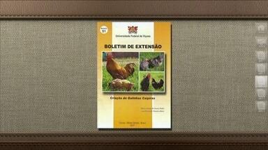 Universidade Federal de Viçosa oferece manual sobre criação de galinhas caipiras - Folheto custa R$ 15 e deve ser pedido através dos Correios.