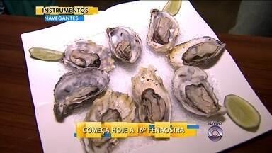 16ª edição da Fenaostra abre nesta quarta-feira (16) com ostras certificadas - 16ª edição da Fenaostra abre nesta quarta-feira (16) com ostras certificadas