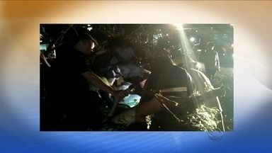 Vendaval atinge a região Oeste; motorista fica ferido após árvore cair sobre carro - Vendaval atinge a região Oeste; motorista fica ferido após árvore cair sobre carro
