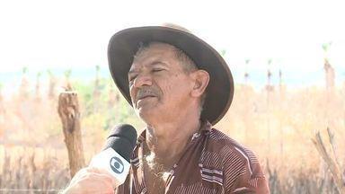 70 cidades do Piauí podem ter benefício do Garantia Safra cortado - 70 cidades do Piauí podem ter benefício do Garantia Safra cortado