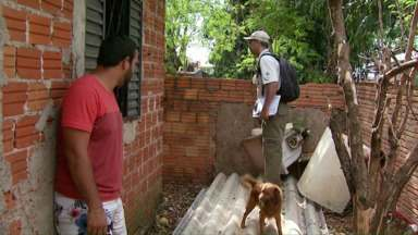 CCZ intensifica ação de controle do mosquito da dengue na região do Porto Meira - O trabalho foi intensificado na região depois do temporal do dia sete de setembro.