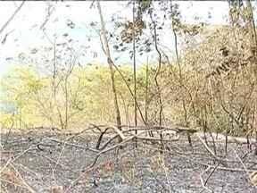 Incêndio destrói 200 hectares de reserva ambiental - Área fica próxima à Ladainha. Chamas começaram após fazendeiro por fogo em pasto.