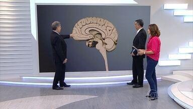 Cérebro é o órgão que comanda todas as emoções; entenda o funcionamento - O neurologista José Barrote mostra o funcionamento de áreas do cérebro e como os neurônios atuam no comando de todo o corpo humano.