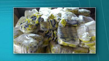 Polícia Civil faz nova apreensão de sal temperado - Produto é da mesma empresa que fabricava o tempero com sal bovino.