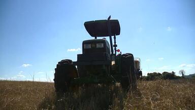 Produtores rurais preparam terra para plantação da próxima safra - Soja ganha força em relação ao milho.