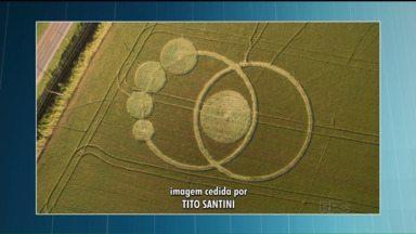 Círculos misteriosos são registrados em plantação de Prudentópolis, no Paraná - Na cidade de Prudentópolis, foram registrados círculos misteriosos no meio de uma plantação de uma fazenda.