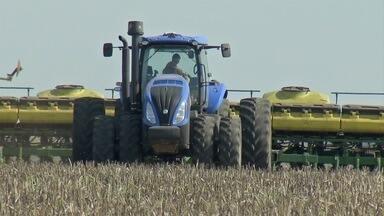 Produtores já iniciaram plantio de soja em Campo Grande, MS - Até agora, pouco mais de 6% da área total já foi semeada em Mato Grosso do Sul. E neste ciclo, a comercialização antecipada está maior.