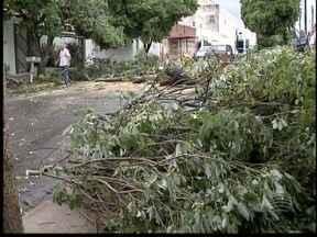 Chuva desta sexta-feira causou estragos e queda de energia - Energisa informou que houve um 'volume anormal' de problemas no sistema elétrico.