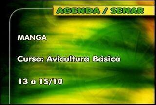 Confira os cursos oferecidos pelo Senar - Em Manga, é oferecido o curso de Avicultura Básica.