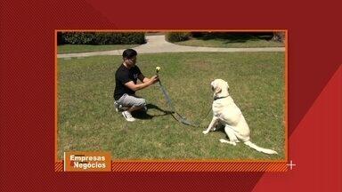 Empresa americana cria acessório que ajuda a tirar selfie com cachorro - Para quem gosta de fazer selfie com os cachorros, a bolinha acoplada ao celular faz os animais não tirarem os olhos da câmera.