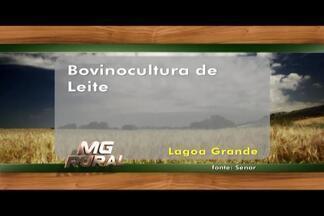 Confira os cursos oferecidos pelo Senar no Alto Paranaíba - Aplicação de agrotóxicos e bovinocultura de leite são alguns cursos oferecidos. Aulas são ministradas em Coromandel, Monte Carmelo, Lagoa Grande, dentre outras cidades.