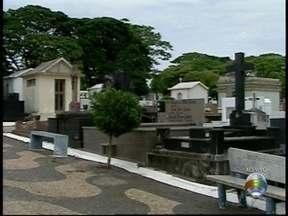 Prazo para limpeza de túmulos termina nesta sexta-feira - Saiba quais as recomendações do poder público.