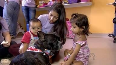 Cães ajudam em recuperação de pacientes em hospital em Campo Grande - Pacientes internados passeiam com os animais em corredores do hospital, como forma de distração durante o tratamento