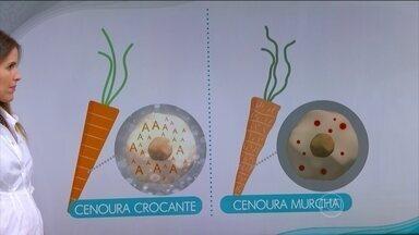 Colocar a cenoura na geladeira sem plástico faz ela murchar, perder água e sem crocância - Colocar a cenoura na geladeira sem plástico faz ela murchar, perder água e sem crocância.
