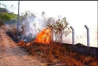 Equipes trabalham na prevenção de incêndios no Araripe - Floresta sofreu dois grandes incêndios nos últimos sete dias.