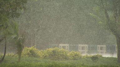 Intensidade de fenômeno climático causa tempestades no verão - A intensidade do fenômeno climático, que, segundo o Cepagri da Unicamp, é a maior dos últimos 50 anos.