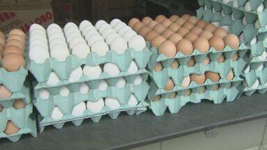 Alta do dólar eleva preços dos ovos na região de Campinas (SP) - A alta do dólar também alterou o preço dos ovos na região de Campinas (SP). Eles estão 50% mais caros que no ano passado. Alguns setores que dependem dele como matéria-prima, principalmente bolos e panetones, já sentiram a alta.