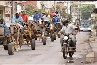 Em Montes Claros, carroceiros fazem protesto contra Projeto de Lei - Proposta pretende proibir trânsito de veículos de tração animal na cidade.
