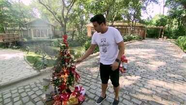 André Marques simula princípio de incêndio em árvore de Natal - O apresentador fala sobre os perigos de instalações elétricas precárias nos pisca-piscas de Natal