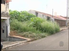 'Parceiros do SP': População denuncia lixo em terrenos baldios - Já são quase 500 pontos marcados pelos moradores.
