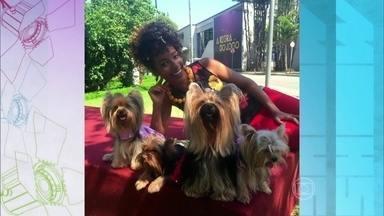 Confira o desfile de moda dos cães de Adisabeba - As quatro cadelinhas que contracenam com Susana Vieira em A Regra do Jogo encantam na passarela