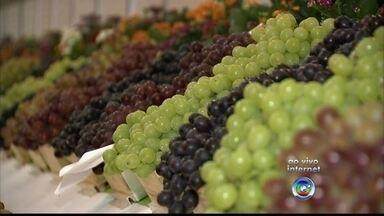Começa nesta sexta-feira (15) a Festa da Uva em Jundiaí - A festa da Uva em Jundiaí (SP) comemora a safra da uva e os visitantes podem encontrar a fruta em diversas formas.