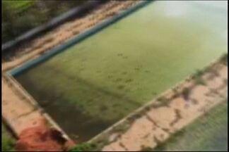 Piscina abandonada em Divinópolis gera preocupação quanto à dengue - Piscina olímpica do antigo clube Toca do Tamanduá acumula água.Prefeitura diz que faz inspeção; dono do terreno não foi encontrado.