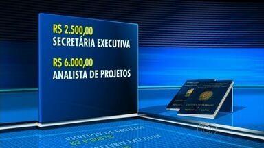 TV Trabalho traz vagas de emprego com salário de até R$ 6 mil, em Goiás - Oportunidades são oferecidas em Anápolis e na Grande Goiânia. Há trabalho para inúmeras profissões, como analista de projetos e vendedor.