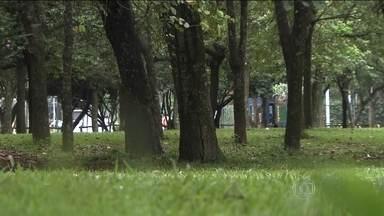 Polícia busca informações que possam identificar os autores de dois estupros no Ibirapuera - Por algumas horas, o Parque Ibirapuera deixou de ser cartão postal da cidade pra se tornar um cenário de horror pra duas vítimas de estupro.