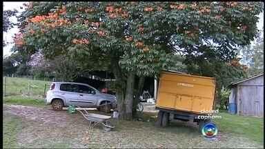 Quadrilha armada invade sítio e faz família refém em Torrinha - Uma quadrilha armada invadiu e assaltou um sítio na noite de domingo (17), na zona rural de Torrinha (SP)