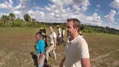 Sobre as Asas mostra o capim dourado do Jalapão, no Tocantins - Max Fercondini e Amanda Richter visitam a pequena comunidade de Mumbuca para conhecer o artesanato feito com este teasouro natural