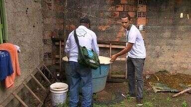 Agentes de saúde fazem ações de combate ao mosquito da dengue - Agentes de saúde fazem ações de combate ao mosquito da dengue.
