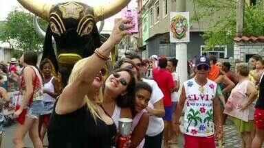 Bloco do boi anima folões em Barra Mansa, RJ - Um dos mais tradicionais da cidade ganhaou as ruas neste sábado (6).