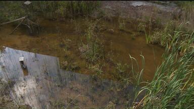 Moradores do Portão, em Curitiba, convivem com água parada de terreno abandonado - Prefeitura disse que vai fazer a limpeza