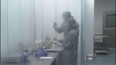 Voluntários começam a testar vacina brasileira contra a dengue - A expectativa é que a vacina fique pronta em 2018.